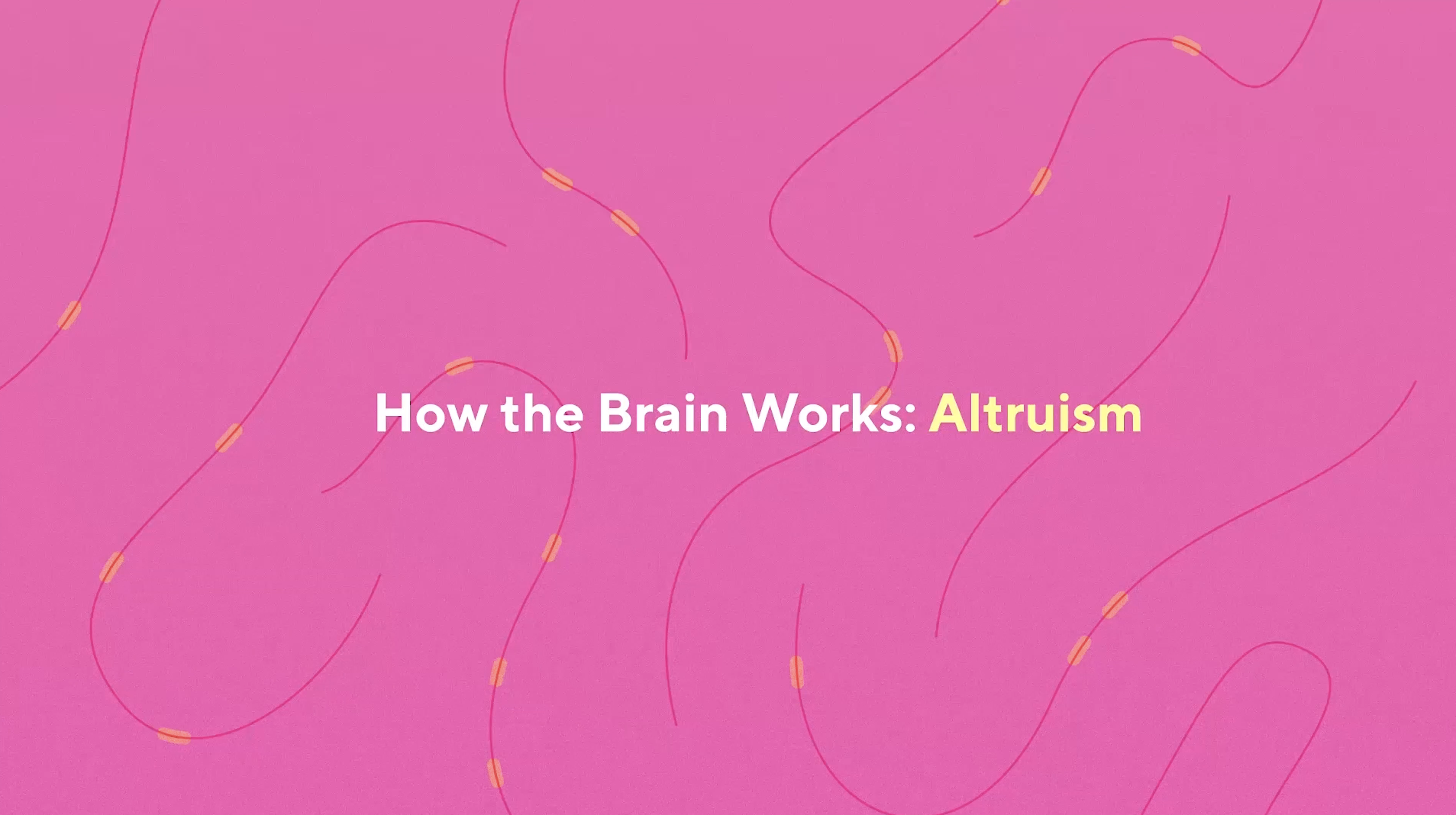 how the brain works altruism