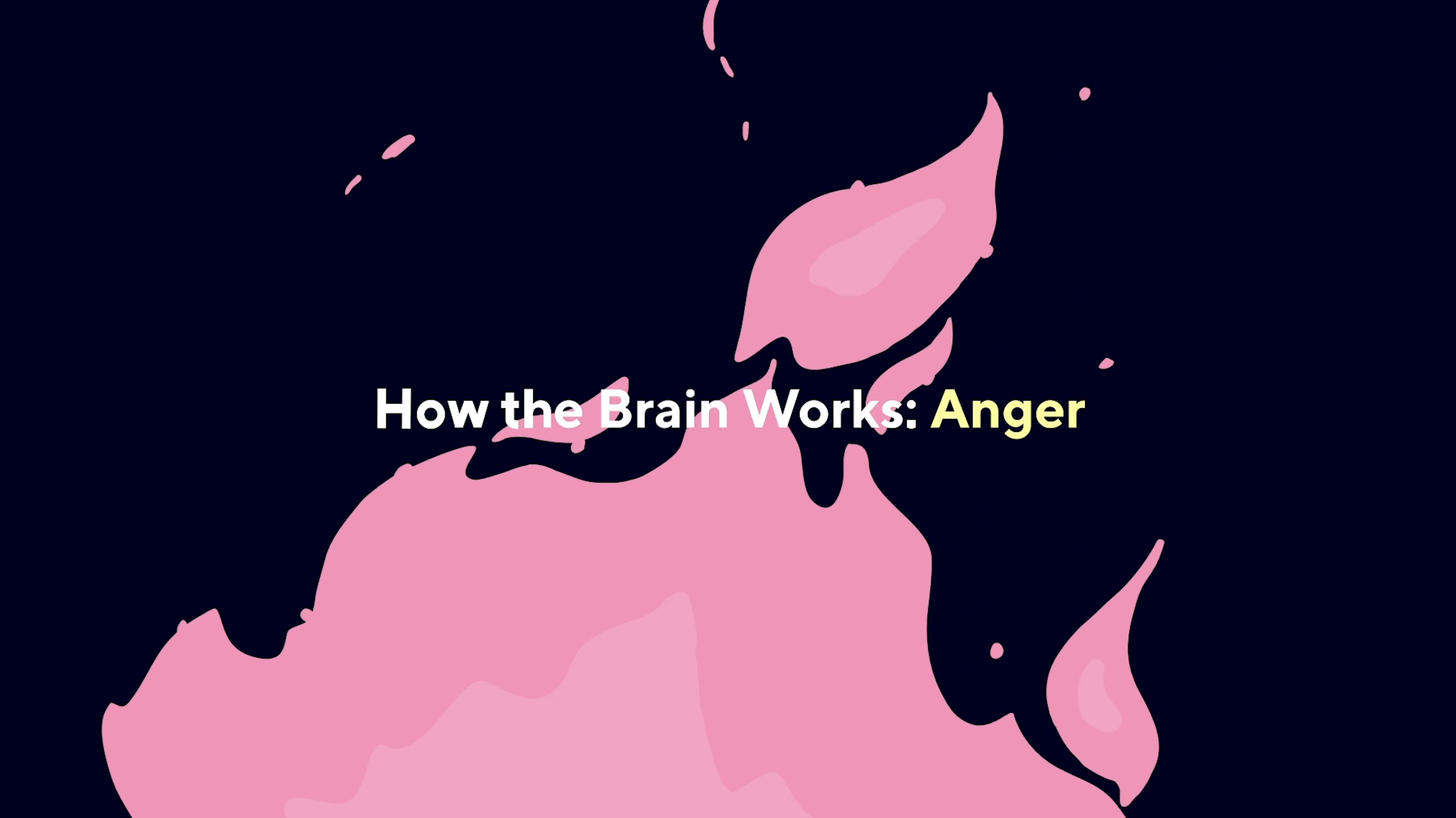 how the brain works anger